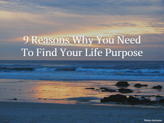 find-your-life-purpose