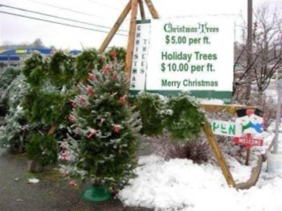 Christmas Trees - $5 a foot Holiday Trees - $10 a foot Merry Christmas