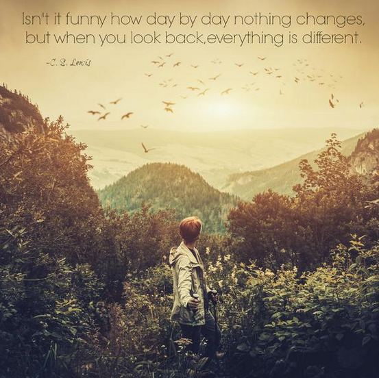 """Isn't it funny how day by day nothing changes, but when you look back, everything is different."""