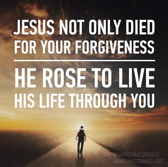 Jesus not only died for your forgiveness, He rose to live His life through you.