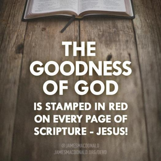 The goodness of God is stamped in red on every page of Scripture - Jesus!