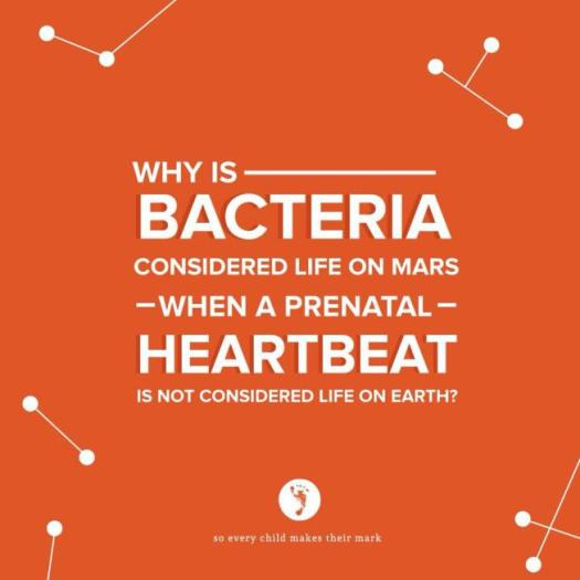 Why is bacteria considered life on mars when a prenatal heartbeat is not considered life on earth?