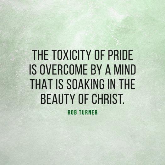 ToxicityOfPride_750x750